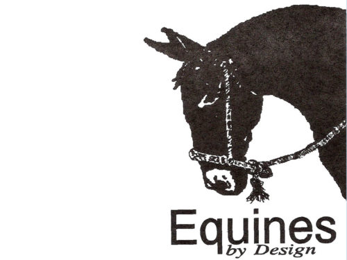 Equines by Design