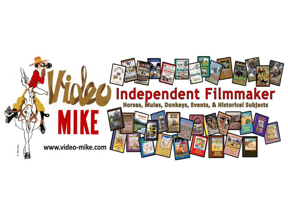 Video mike independent filmmaker