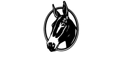 Mule Days Bishop California